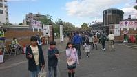 造幣局桜の通り抜け~今年は花が早い - のんここっこぼんこ