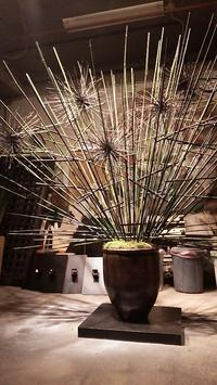植物のオブジェ - クリエイティブlife