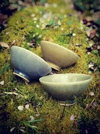 2018 益子 春の陶器市 - ネギシ製陶