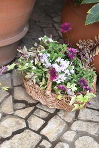 ガーデン&クラフツ  4月の寄せ植え教室① - 小さな庭 2