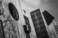 幾何学的な外壁に寄り添う天衣無縫な光蜥蜴 - Silver Oblivion