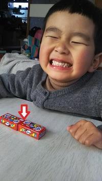 ひさびさコリスのおもちゃ - ウンノ整体と静岡の夜