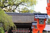 桜紀行平野神社の桜2018 - 暮らしを紡ぐ