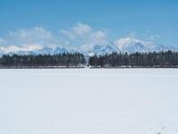 4月中旬ですが・・2夜連続積雪で畑はすっかり雪景色。 - 十勝・中札内村「森の中の日記」~café&宿カンタベリー~