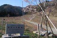 2018年4月 荒島岳情報 - yukoの絵日記