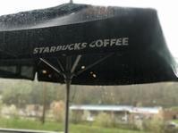 ダダ降りの雨の日々 - ののち幾星霜