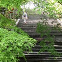 ぶらり京都-151 [嵐山のInternational] - 感性の時代屋 Vol.2