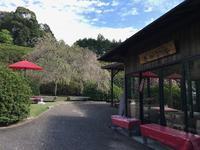 三室戸寺 花の茶屋オープンしました - 【飴屋通信】 京都の飴工房「岩井製菓」のブログ
