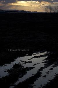 春へ - ekkoの --- four seasons --- 北海道