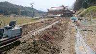 ブルーベリー植付け穴の土壌改良 その3 (ピートモス投入) - 初めてのブルーベリー栽培記