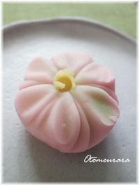 桜の和菓子 - 日々楽しく ♪mon bonheur