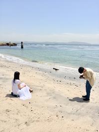 MV撮影 夏の海 - ただびより~多田沙織と音楽と日常~