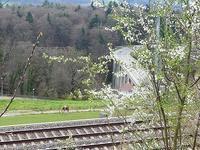 スイスの春を探しに - ヘルヴェティア備忘録―Suisse遊牧記