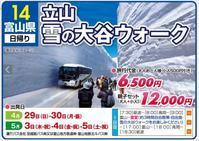 立山 雪の大谷ウォークに行こう! - かえつのう旅っこ ブログ
