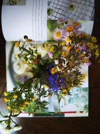 野の花と帽子 - Knitting Note