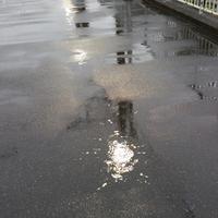 雨の日のスケッチです。 - ご無沙汰写真館