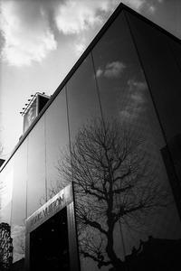 まだ冬を内包するLouis Vuitton - Silver Oblivion