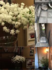 久し振りの花市場「花に囲まれて幸せ気分~~」編 - 納屋Cafe 岡山