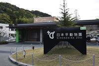 2018年4月 日本平動物園 その1 - ハープの徒然草