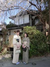 桜の頃に来られました。 - 京都嵐山 着物レンタル&着付け「遊月」