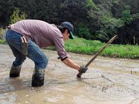 稲の種まき2018 - 農と自然のさんぽみち・やまだ農園日記