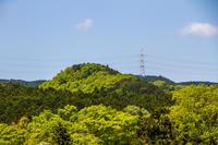 今日の散歩(黒尾根物見山~日和田山へ) - デジカメ写真集