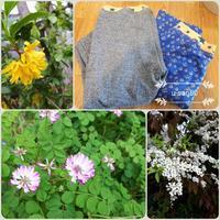 ニットパンツ@muniさんでパジャマズボンと春の花 - 縫うと家族とうちのこと