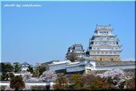 山陰山陽、桜の旅(7)「姫路城」 - 北海道photo一撮り旅