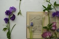 お花の会とアロマ、ハーブクラスとの繋がり - f o l i a g e  |  b l o g
