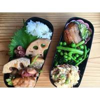 蛸と鶏と蓮根と大根の煮物BENTO - Feeling Cuisine.com