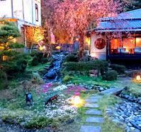 芝桜が咲いてきました - 金沢犀川温泉 川端の湯宿「滝亭」BLOG