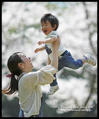 山陽新聞読者の写真コンテスト 2018年4月度入賞 - 気ままな Digital PhotoⅡ