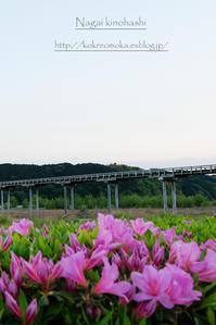 夕暮れ時間 #2 - 長い木の橋