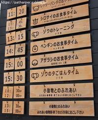2018年4月日本平動物園その2 - ハープの徒然草