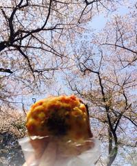 善福寺で花見パン - NO PAN NO LIFE