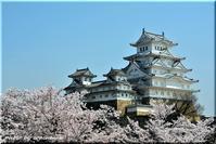 山陰山陽、桜の旅(8)「姫路城」 - 北海道photo一撮り旅