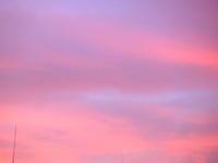 きゅーぴーMAYAのスピリチュアルタロットキャラバン - モデラートカンタービレ 大阪 タロット 数秘術 カラールネーション ヒプノセラピー 西洋占星術