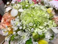 チャッピーちゃんに動物病院から花が届いた【閲覧注意】 - Lucky★Dip666-Ⅲ