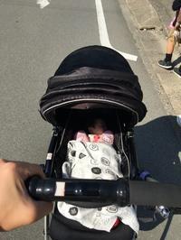 お散歩日和 - Bd-home style