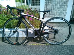 相方さん自転車購入!!&千葉みなと『ハーベストガーデン』 - ますけんの走る日記