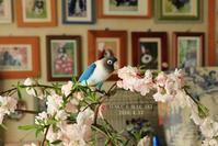 B.B、花*を楽しむ♪ PART2 - FUNKY'S BLUE SKY