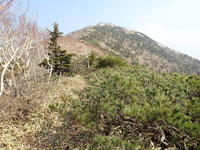 アポイ岳810m2018.04.21 - ひだかの山に癒やされて