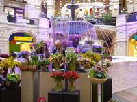 「スパシーバ」だけで旅するモスクワ<グム百貨店に行こう!> - Малый МИР〔マールイ・ミール〕