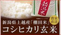 新潟県上越産 棚田米 上越産コシヒカリには、きれいな水と空気のめぐみがつまっています。 - 初ブログですよー。