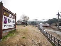 十日町の美人林 - tokoya3@