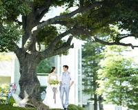 ゴールデンウィークスペシャルフェア - museum of modern happiness west53rd日本閣