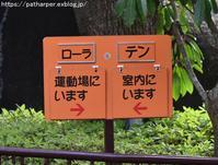 2018年4月浜松市動物園その1 - ハープの徒然草