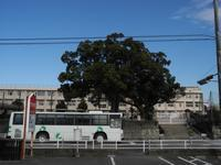 盈進校前 - リンデンバス ~バス停とその先に~