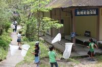 旬のネタあります!(4月22日) - こどもとむしの秘密基地:佐用町昆虫館