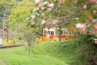 Camellia train - IL EST TROP TARD     時は過ぎゆく ...